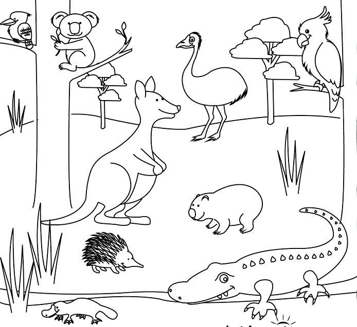 Little Animal Coloring Pages Australia Animals Australian Animals Animal Coloring Pages