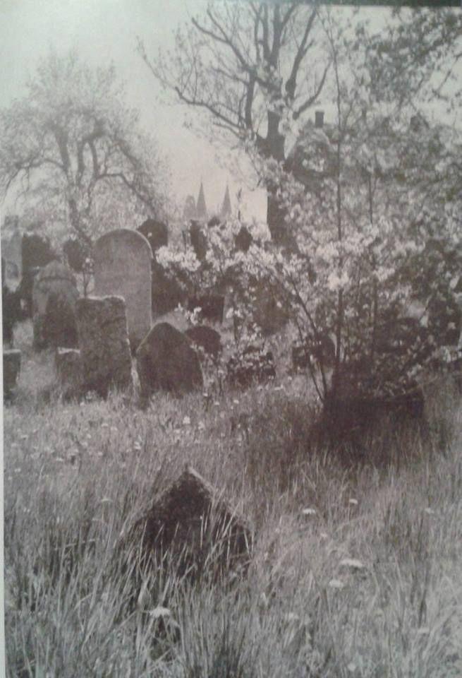 starý židovský hřbitov | FB: Irena Vladařová