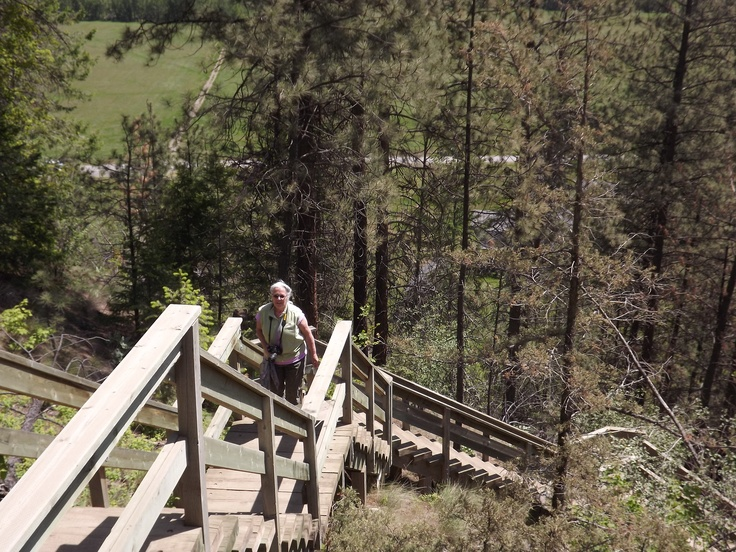 Hiking to the Falls in Fintry Provincial Park in British Columbia