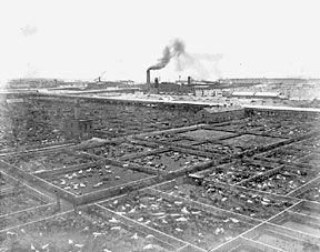 Livestock pens comprised approximately 40 acres of the stock yards, 1880.