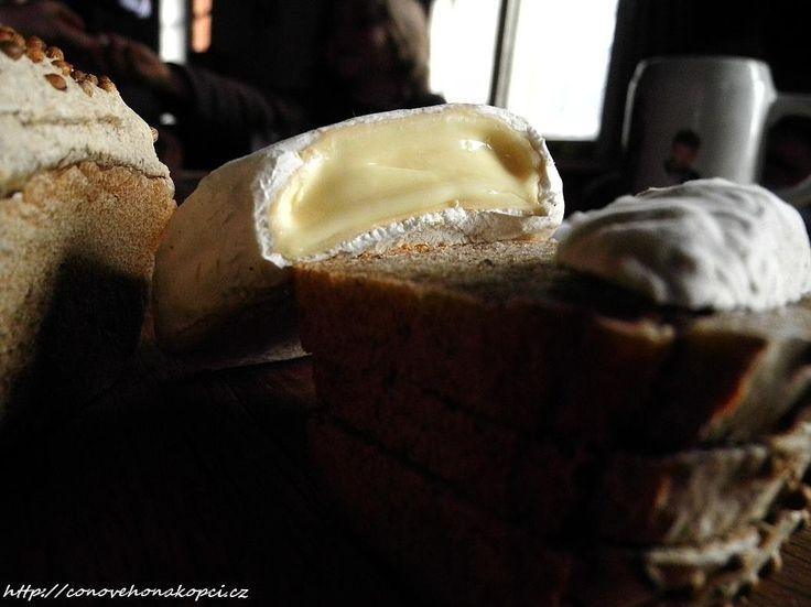 Camembert podle Domácího mlékaře str. 135