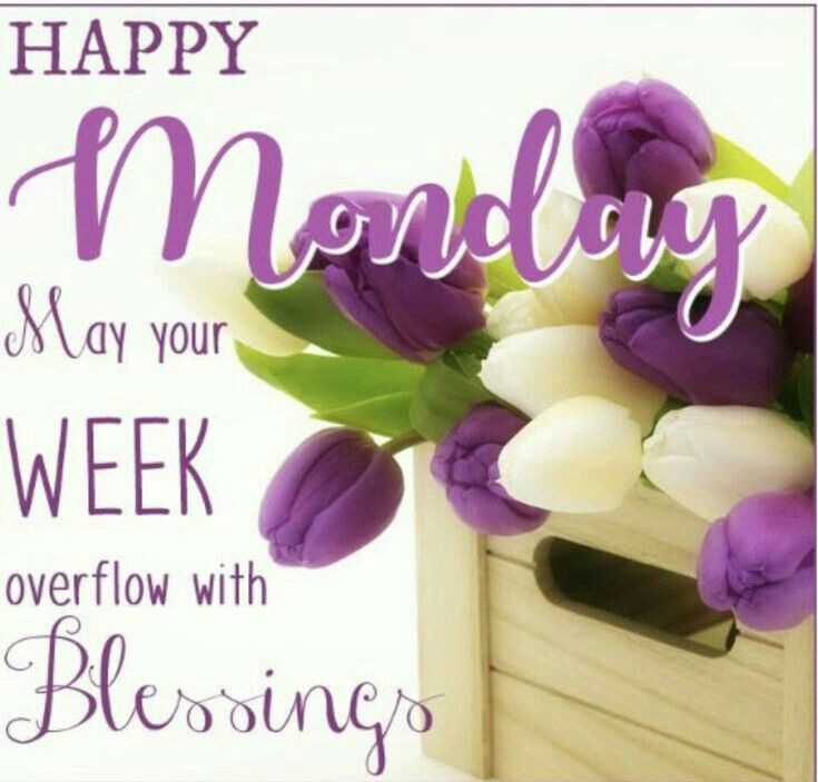Good morning, have a wonderful week e are blessed with