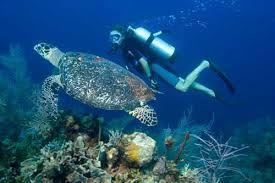 bali ocean..... in indonesia