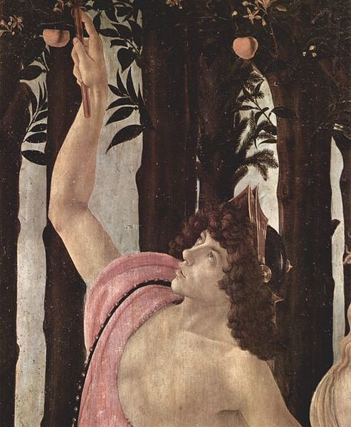 'Detail'  Botticelli's Mercury in Primavera may have been modeled after Lorenzo di Pierfrancesco