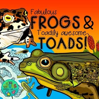 Frogs and Toads {Fun & facts about Frogs & their life cycle}