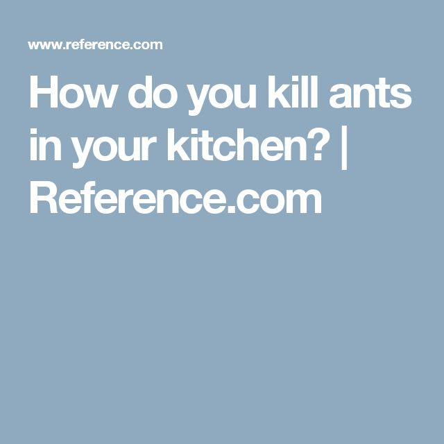 How To Kill Ants In Kitchen Cabinets: 1000+ Ideas About Formica Cabinets On Pinterest
