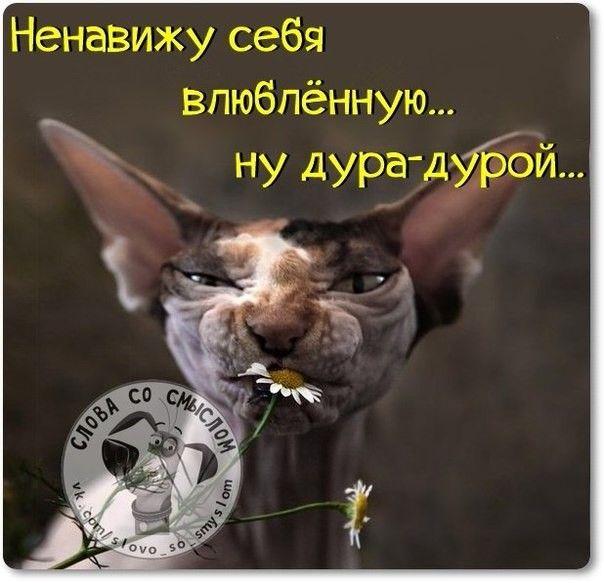 мысли))))))))