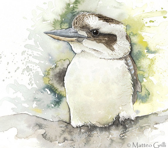Laughing Kookaburra Medium Print Watercolor by MatteoGrilliArt, $35.00