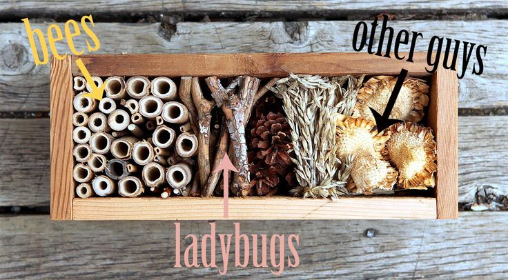 bug hotel inhabitants plus instructions on building a bug hotel to provide safe haven for your beneficial insects! #gardentherapy