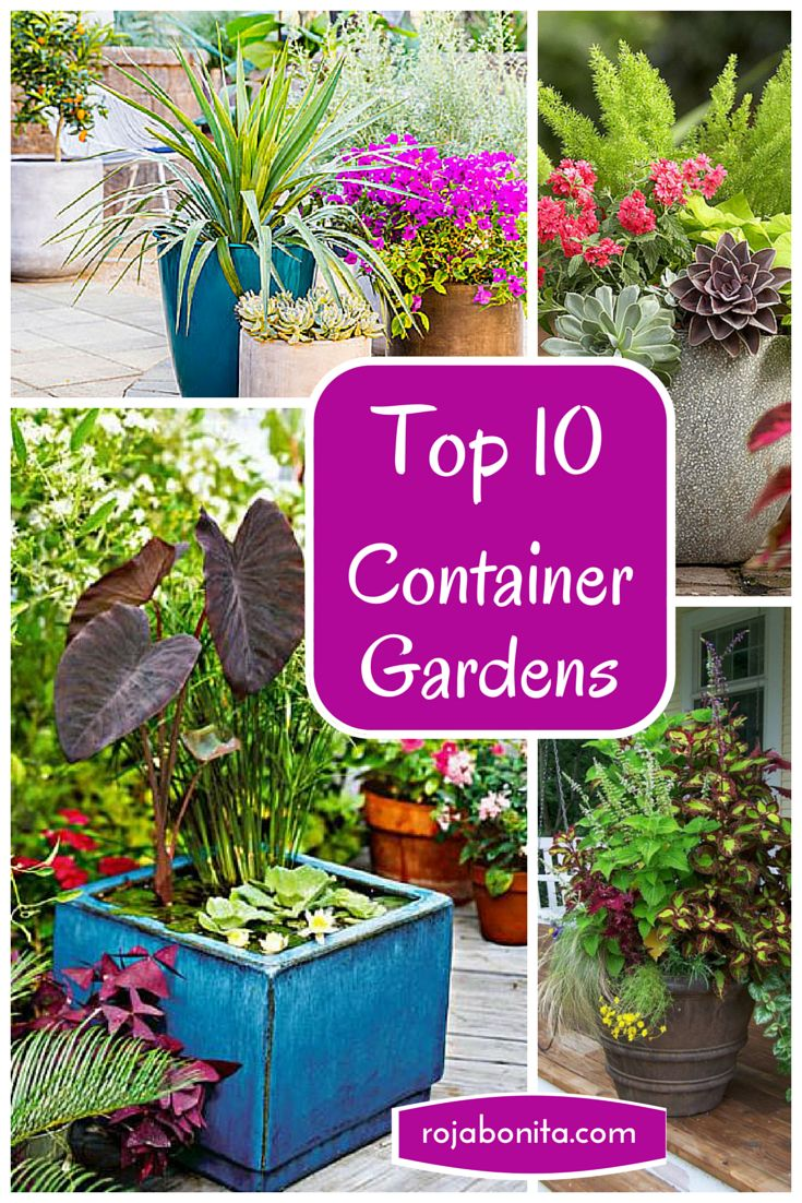 12 Best Entry Way Planters Images On Pinterest Tall 400 x 300