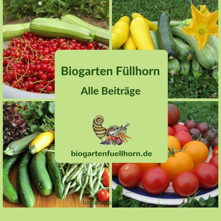 Biogarten Füllhorn ist ein Gartenblog für Hobbygärtner, die Tipps und Anleitungen zum erfolgreichen Anbau suchen. #garten #selbstversorger #gemüse #anbau