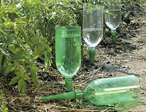 Water Your Plants: Make an automatic plant watering device out of an empty soda bottle and one of these AquaSpikes. http://www.megagro.com/aquaspikes.htm