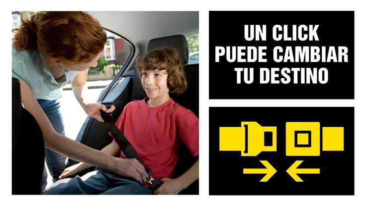 Campaña Cinturón de Seguridad /4