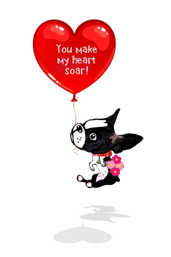 Boston Terrier Valentine's day card collection by onesmalldog