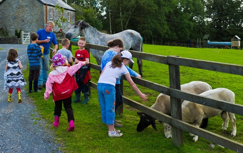 Feeding the animals - Every family gets a free bucket of feed for the animals.