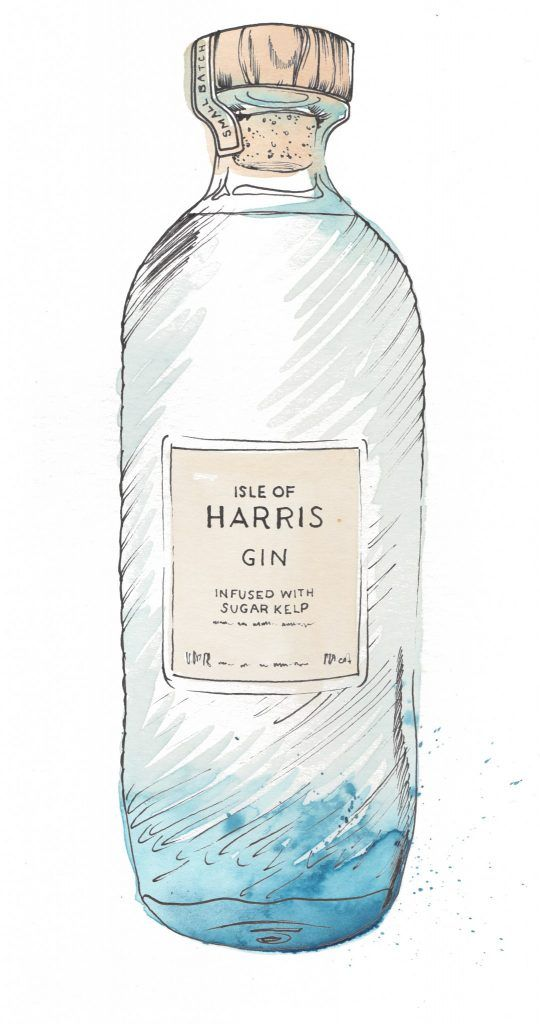 Isle of Harris Gin Bottle Watercolour Illustration. Click the 'visit' link to commission your own choice of gin illustrations