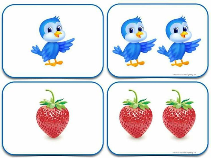 (2015-06) Fugl, jordbær