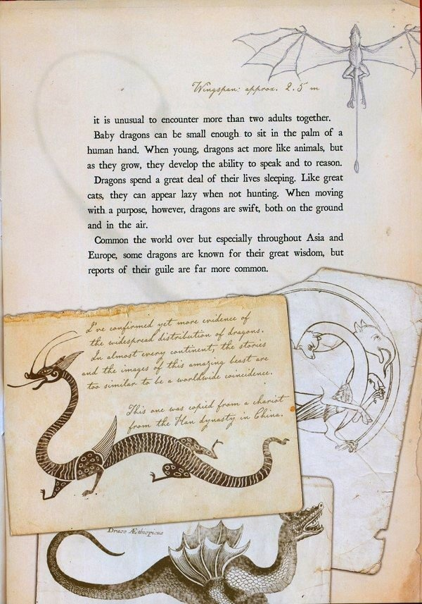 From Arthur Spiderwick's Field Guide