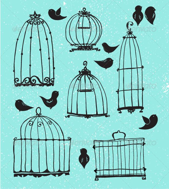 Line Drawing Jquery : Best ideas about birdcage drawing on pinterest bird