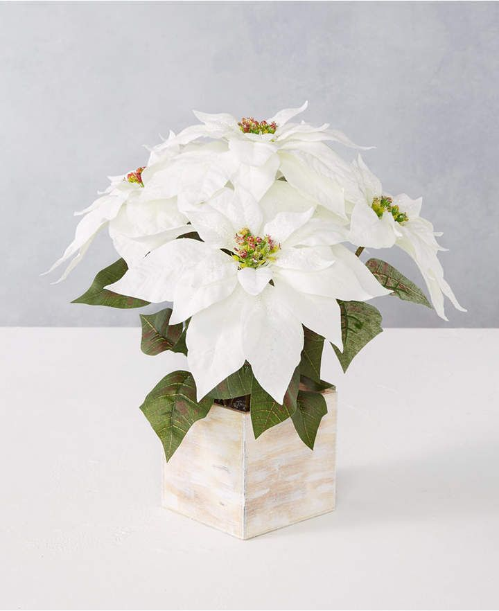 Martha Stewart Collection Martha Stewart Silver Woods Artificial Potted White Poinsettia Create In 2020 Holiday Decor Christmas Martha Stewart Christmas Holiday Decor