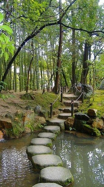 Zen, stepping stones bridge                                                                                                                                                     More