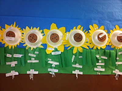 Sunny Sunflowers - Parts of Plants Diagram as seen on First Grade Faculty  www.firstgradefac...