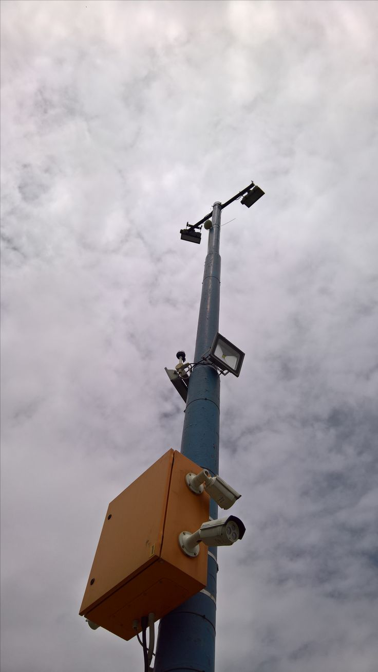 Trend Bee removal in Johannesburg bees in a Netball field light pole