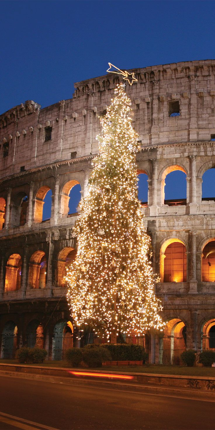 Christmas tree standing in front of the Colosseum in Rome, Italy.
