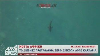 Ο καρχαρίας που... τρομοκράτησε τους σέρφερ - ΒΙΝΤΕΟ   Ένας μεγάλος λευκός καρχαρίας έγινε η αιτία να διακοπεί το διεθνές πρωτάθλημα σερφ στη Νότια Αφρική... from ΡΟΗ ΕΙΔΗΣΕΩΝ enikos.gr http://ift.tt/2uGCXBd ΡΟΗ ΕΙΔΗΣΕΩΝ enikos.gr