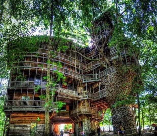 Horace Burgess (in Tennessee) built a tree house, with a whopping 1,000 square meters (nearly 11,000 square feet) and standing 90 feet tall! It took fifteen years .  The cabin was built with recycled materials.World Largest, Tree Houses, Trees House, Places, Interesting Facts, Spiral Staircases, Treehouses, Basketball Court, Spirals Staircas