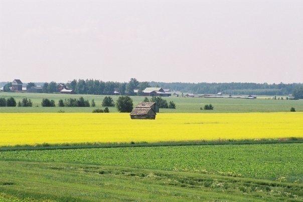 South Ostrobothnia