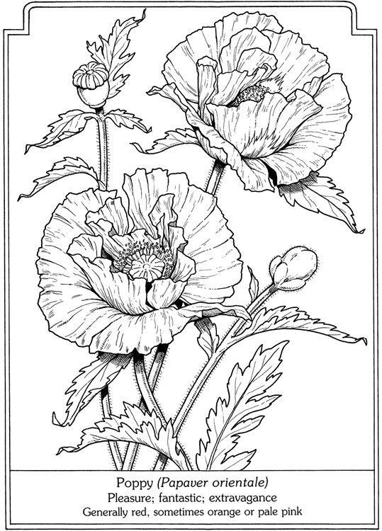 Floral print.