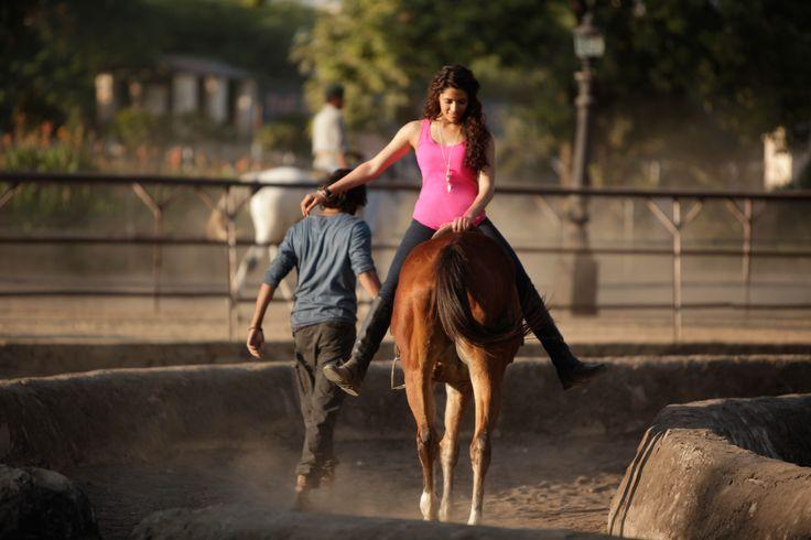 Horses are an important element of Rakeysh Omprakash Mehra's next film Mirziya. It is a contemporary love story set in Rajasthan. #Mirziya hindi movie 2016.