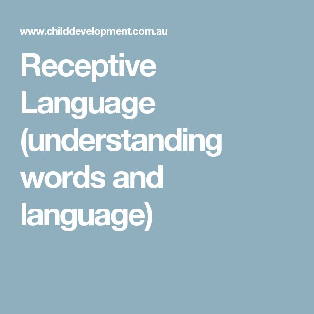 Receptive Language (understanding words and language)