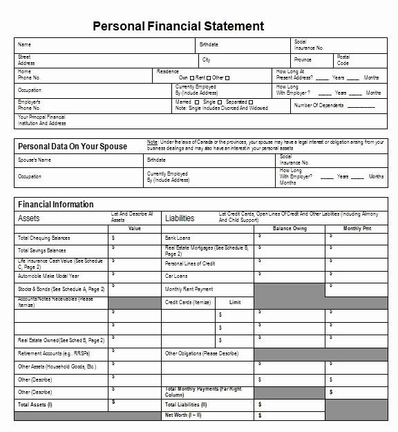 Free Personal Financial Statement Template Unique 40 Personal Financial Statement Templates In 2020 Personal Financial Statement Financial Statement Statement Template