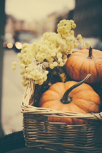 Simple fall decor: Basket, pumpkins or gourds and dried flowers - or fresh, in a small container