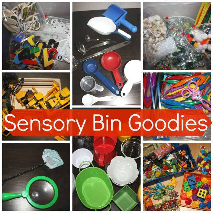 sensory bin goodies