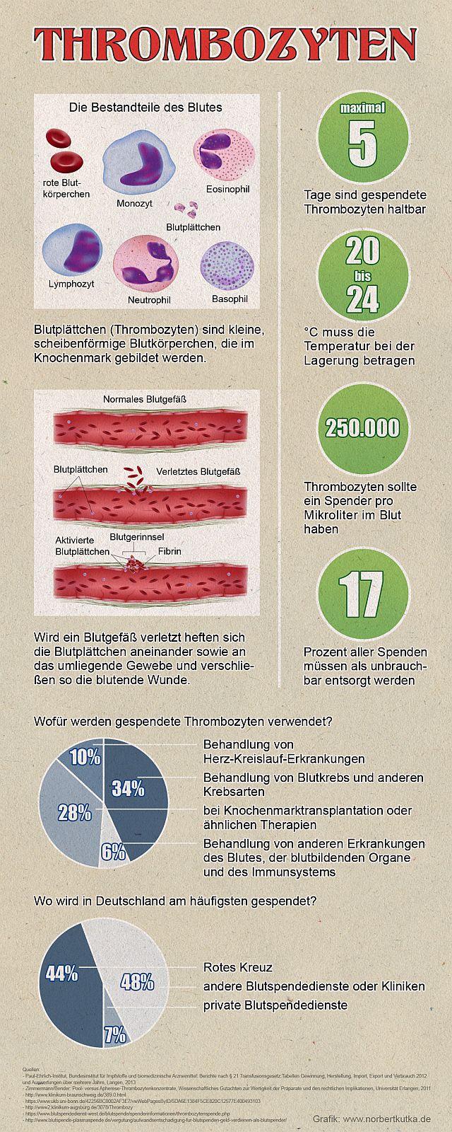 Infografik mit Statistik zu Blutblättchen und Thrombozyten Spende. Quelle: www…. Angela Janssen