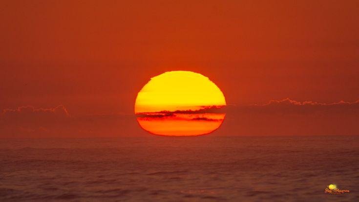 "Jim Simpson:  Morning Moon Sunrise Dolphins Smith Point, NY"" : twitter - 8/28/16"""
