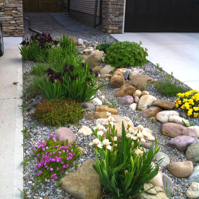 Dry Riverbed Rock Garden Zone 3 Image Only Plants