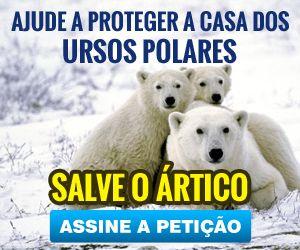 Ajude a proteger a casa dos ursos polares, salve o Ártico. Assine a petição
