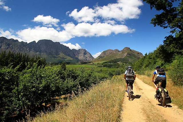 Mountain biking in the Franschhoek valley