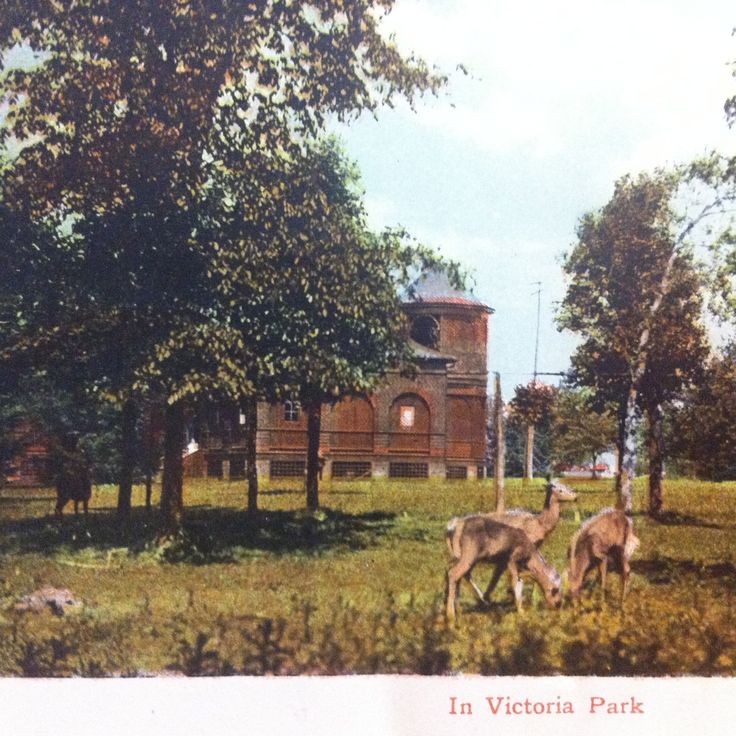 Victoria Park, Berlin (now Kitchener) Ontario, circa 1912.