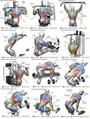 Tabla de ejercicios de espalda #pilatesejercicios
