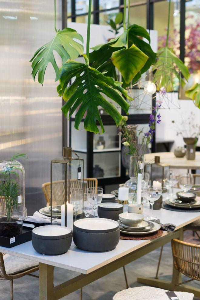 Urban Jungle Trend fürs Zuhause Pflanzen Deko von der Ambiente 2018