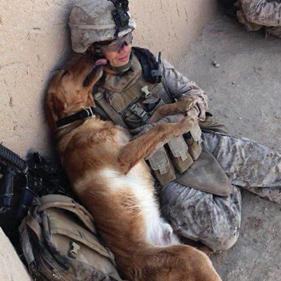 True friendship. Awesome photos