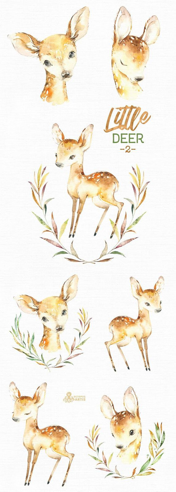 This Little Deer - 2 set of 11 high quality hand painted watercolor images. Perfect graphic for any projects, babyshowers, wedding invitations, greeting cards, photos, posters, quotes and more. ----------------------------------------------------------------- This listing includes: 11 x