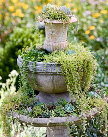 A lovely little vignette of plants spilling from an urn and pot. - Traditional Home ®/ Photo: Helen Norman