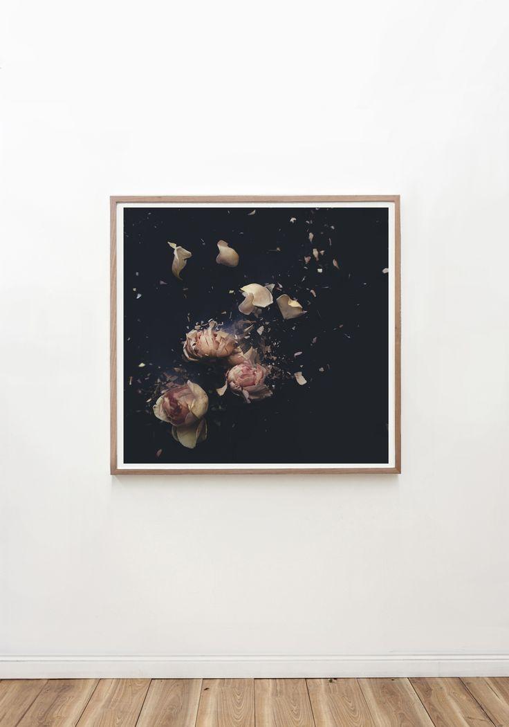 Garden roses v the artwork stylist