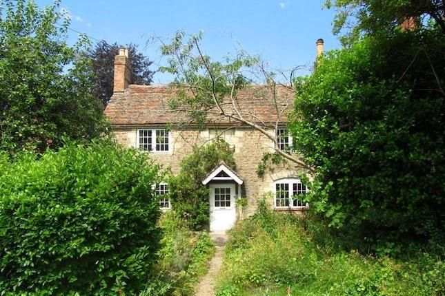 3 bedroom detached house to rent in Henley Avenue, Oxford OX4, 1400pm